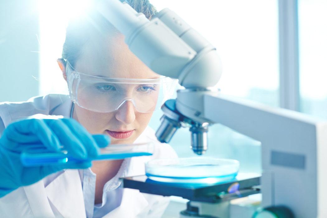 Biologielaborantin Mikroskop Petrischale