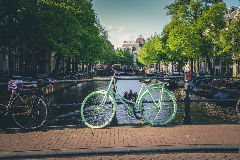studieren in holland ohne nc bewerbung muster