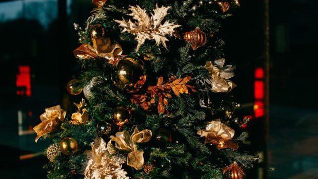 Weihntsfeiermythen, Weihnachtsfeier