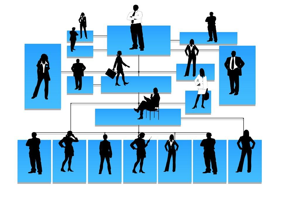 Grafische Darstellung einer Hierarchieebene von Mitarbeitern